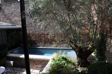 Un petit massif paysagé avec notamment un bel olivier est implanté à proximité immédiate de la piscine et permet d'adoucir l'ambiance toute minérale de cette cour de centre-ville.