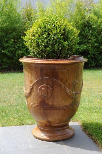 Vase d'un jardin dans la Drôme