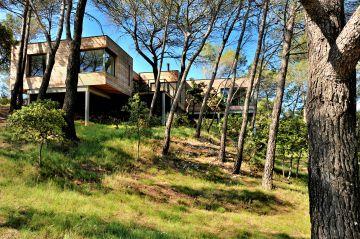 Une maison en bois sur pilotis qui côtoie les arbres