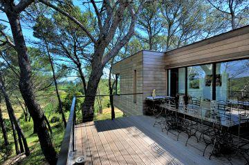 Petite terrasse en bois entourée d'arbres