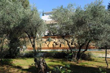 Les oliviers à côté de la piscine s'épanouissent et rendent le bassin discret depuis le jardin.