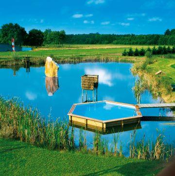Piscinelle hexagonale avec ponton située au milieu d'un étang