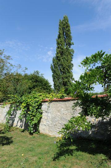 La propriété est clos de murs traditionnels et les peupliers se dressent au loin donnant un côté bucolique à la scène.