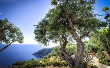 La maisons Zoe Paxos est située dans l'Île de Paxos en Grèce, au large de l'Épire dans la mer Ionienne.
