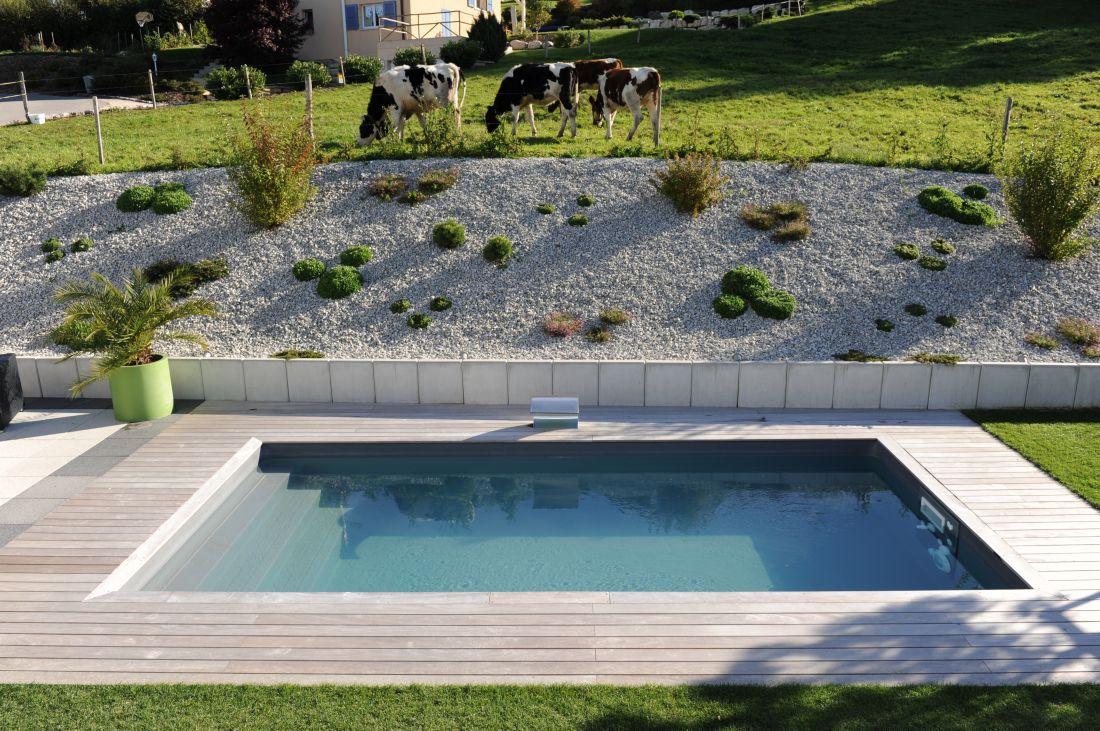 Quelques vaches qui paissent, le plan d'eau au repos et la lame d'eau qui en toute discrétion apporte un subtil design à la piscine.
