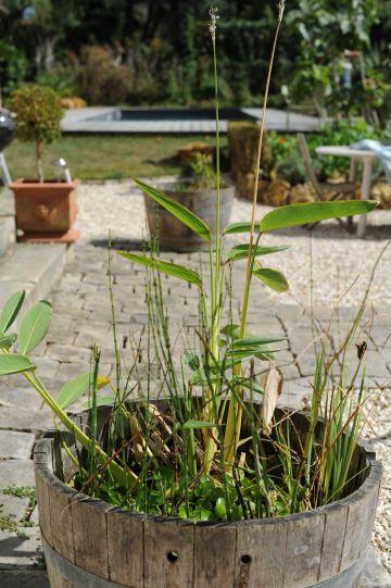 Un pot pour bambou en forme de demi tonneau qui reprend les tons de l'ensemble de la scène.