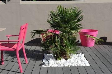 Les touches déco comme le palmier et le mobilier rose fuchsia au bord de la piscine terminent parfaitement l'ensemble.